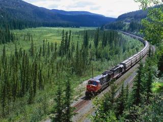 обои Длинный поезд и красивый пейзаж фото