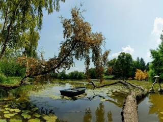 обои Лодка на пруду с лилиями, осень фото