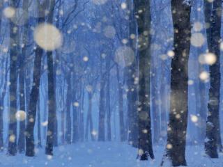 обои Снег за окном фото
