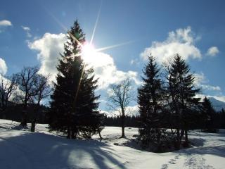 обои Закaт солнца в зимний дeнь фото