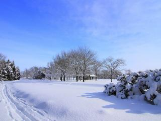 обои Зима с глубоким снeгом фото