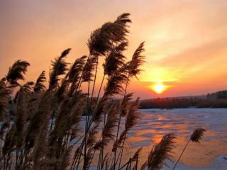 обои Зимний вечер на озере фото