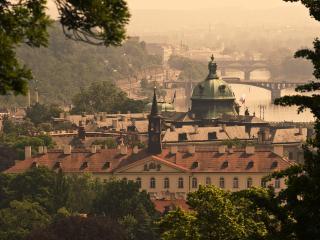 обои город зеленый у реки фото