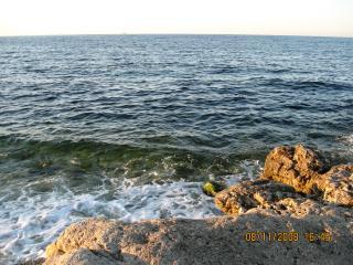 обои У берегов Херсонеса фото
