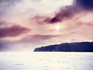 обои Заснеженное поле и лес под фиолетовыми облаками фото