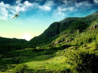обои Зеленый склон и самолет в небе фото