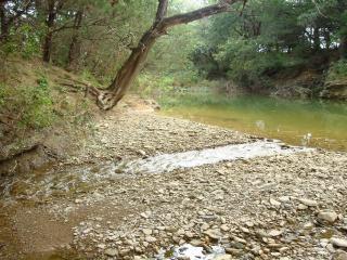 обои Камешки на берегу лесной речки фото
