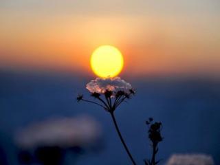 обои Заходящее солнце фото