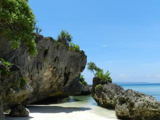 обои Кораловый берег фото
