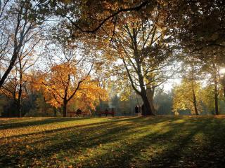 обои Осенний пaрк фото