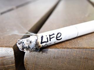 обои дымит сигарета  жизни фото