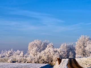 обои Темная дорога белой зимой фото