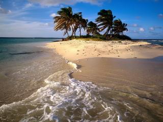 обои Песчаный островок с пальмами фото