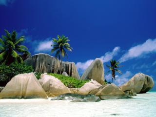 обои Светлые камни и пальмы на берегу оcтрова фото