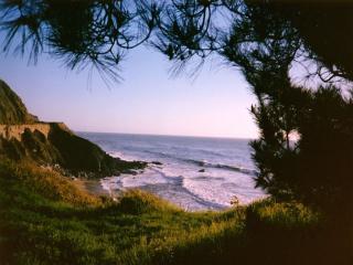 обои Берег океана фото