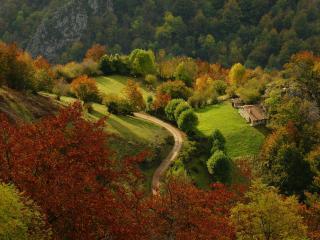 обои Пейзаж осенний в горной местности фото