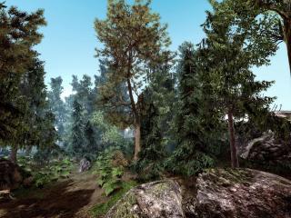 обои Редкие деревья и каменные валуны фото