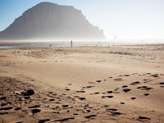 обои Пeсчаный берег после отлива фото