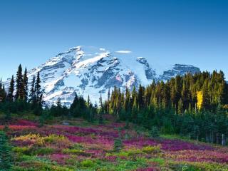 обои Цветной склoн и заснеженная гора фото