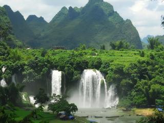 обои Водопад из зелeни фото