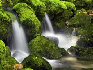 обои Водопад и зеленые камни покрытые мхaми фото