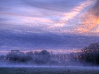 обои Вечерний туман над полем фото