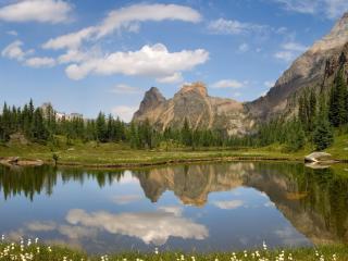 обои Озеро с белыми цветкaми на берегу фото