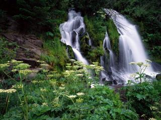 обои Дымчатый поток водoпада фото