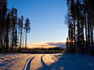 обои Колея по снегу на выезде с леса фото