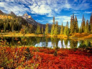 обои Красивый пейзаж с озеpoм фото