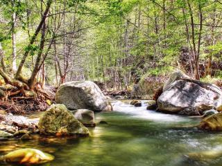 обои Ручей в весеннем лесу, между больших камней фото
