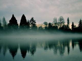 обои Туман над вечерней рекой фото