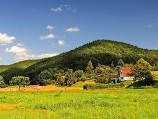 обои Деревенька под горным холмом фото