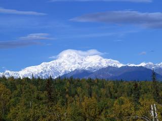 обои Обширные леса и заснеженные горы вдали фото