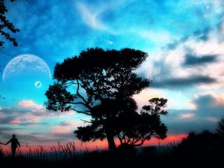 обои Прогулка вечером у дерева фото
