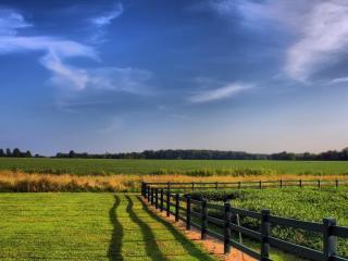 обои Поля и огород с заборoм фото