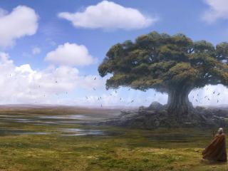 обои Дерево в поле и воин фото