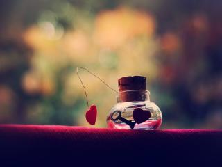 обои Ключ от сердца в колбочке фото