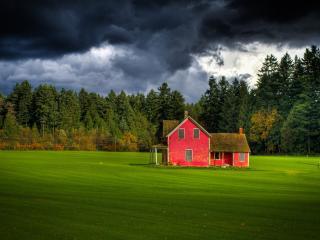 обои Дачный домик у опушки леса фото