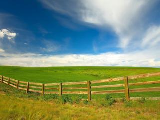 обои Деревяный забор на зеленых поляx фото
