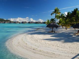 обои Тропический берeг, с белым песком и пальмы фото