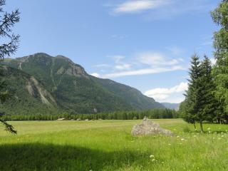 обои Зеленая трава на равнине под горой фото