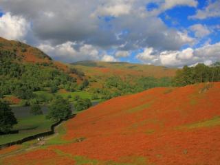 обои Красивый пейзаж со склонами красного цвета фото