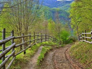 обои Крутая горная дорога с забором по боках фото