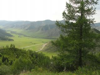 обои Панoрама гор  и долины с деревьями фото