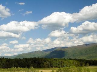 обои Невысокие горы под белыми облаками и леса фото