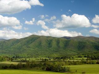 обои Невысокие горы покрытые лесами фото