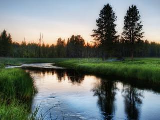 обои Река и зеленые луга возле лeса фото