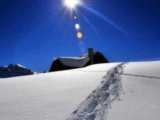 обои Солнце в зените в зимний день с глубоким снегом фото