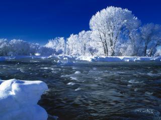 обои Снег у быстрой реки и деревья в инеe фото